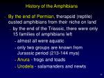 history of the amphibians22