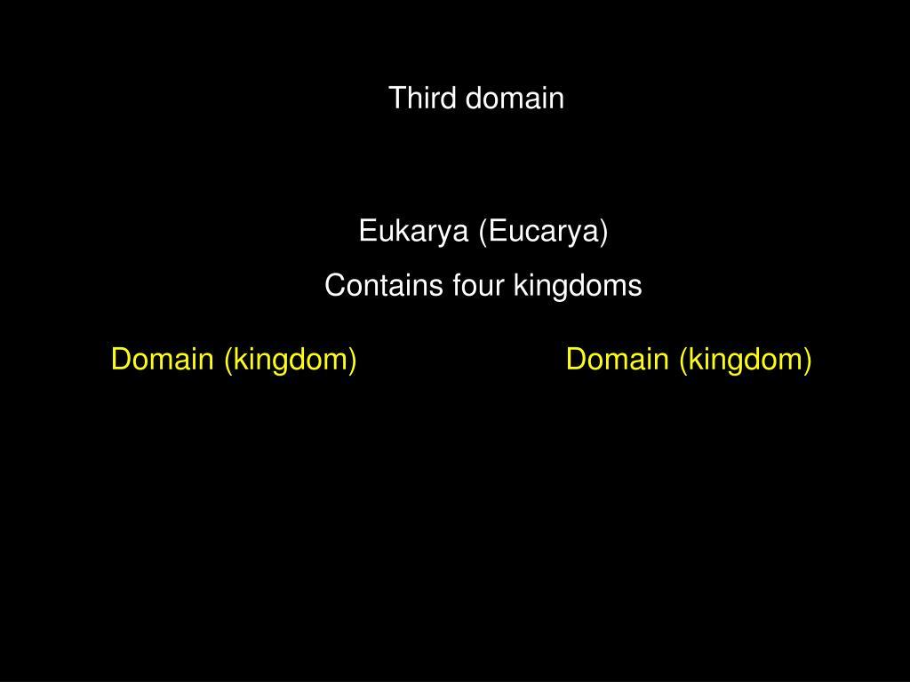 Third domain
