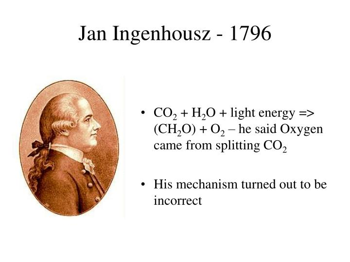 Joseph Priestley And Jan Ingenhousz Experiments About Photosynthesis >> PPT - Van Helmont s willow growth experiment early 1600 s PowerPoint Presentation - ID:1100415