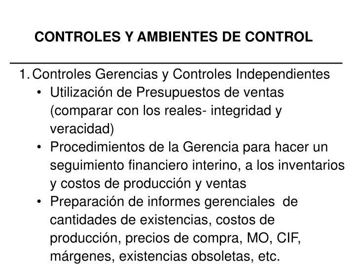 CONTROLES Y AMBIENTES DE CONTROL