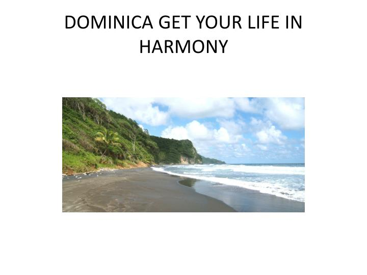 Dominica get your life in harmony