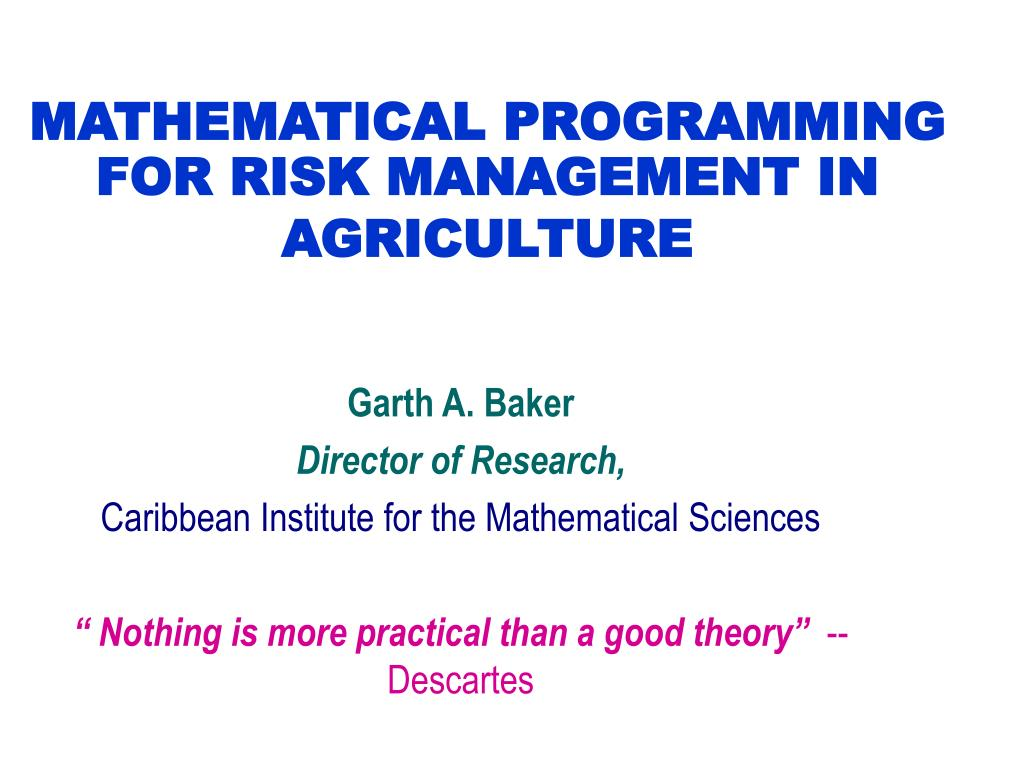 mathematical programming for risk management in agriculture l.