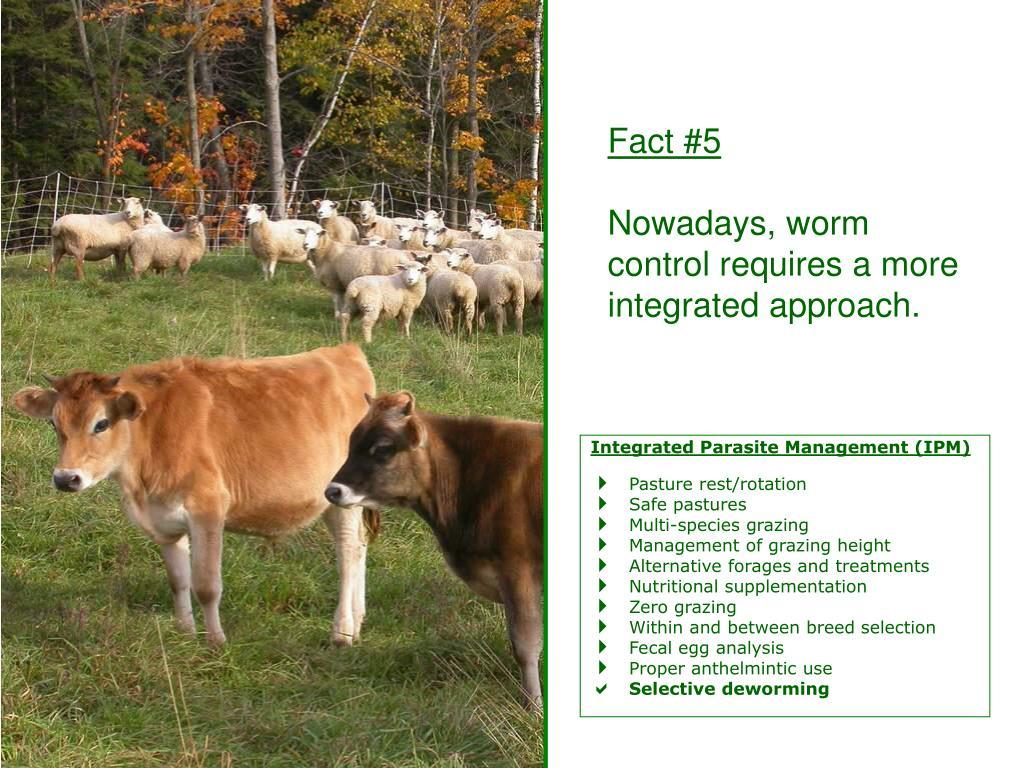 Integrated Parasite Management (IPM)