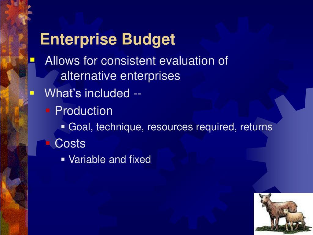 Enterprise Budget