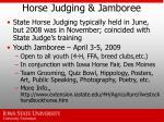 horse judging jamboree