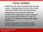 horse updates17
