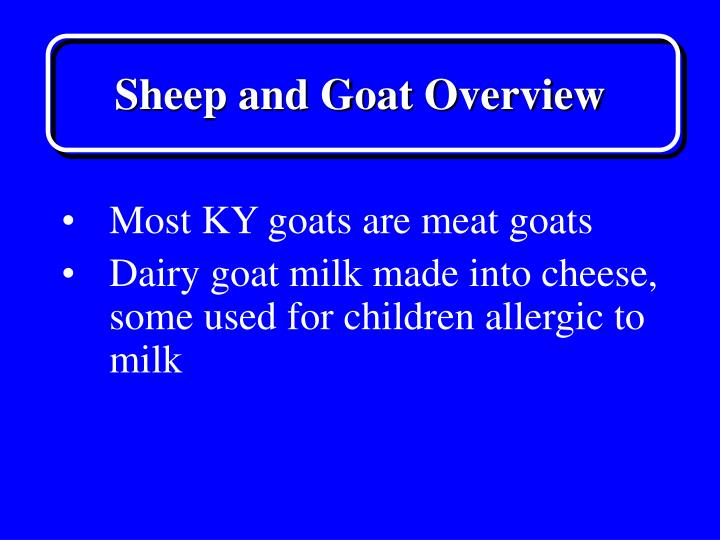 Sheep and goat overview3
