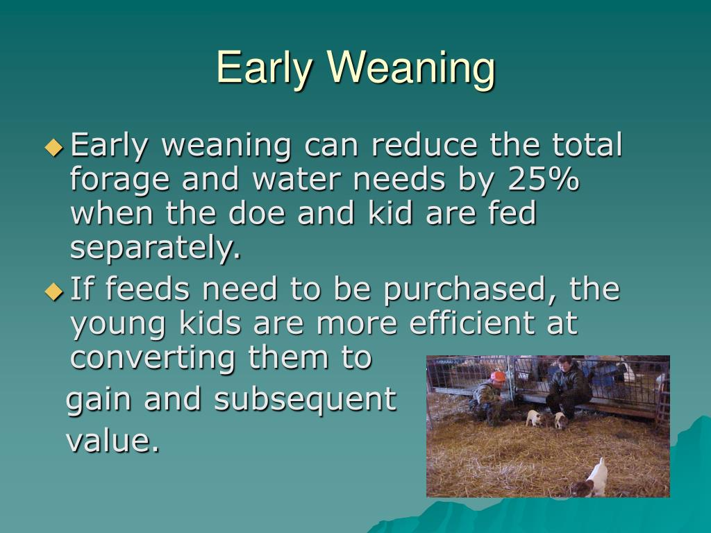 Early Weaning
