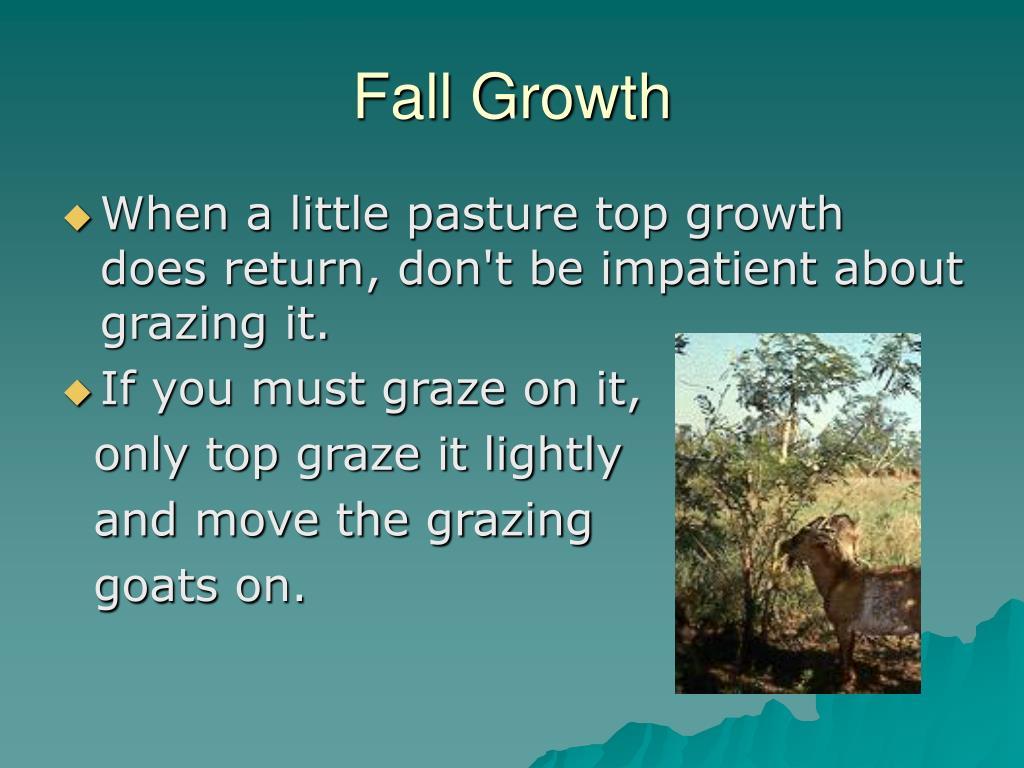 Fall Growth