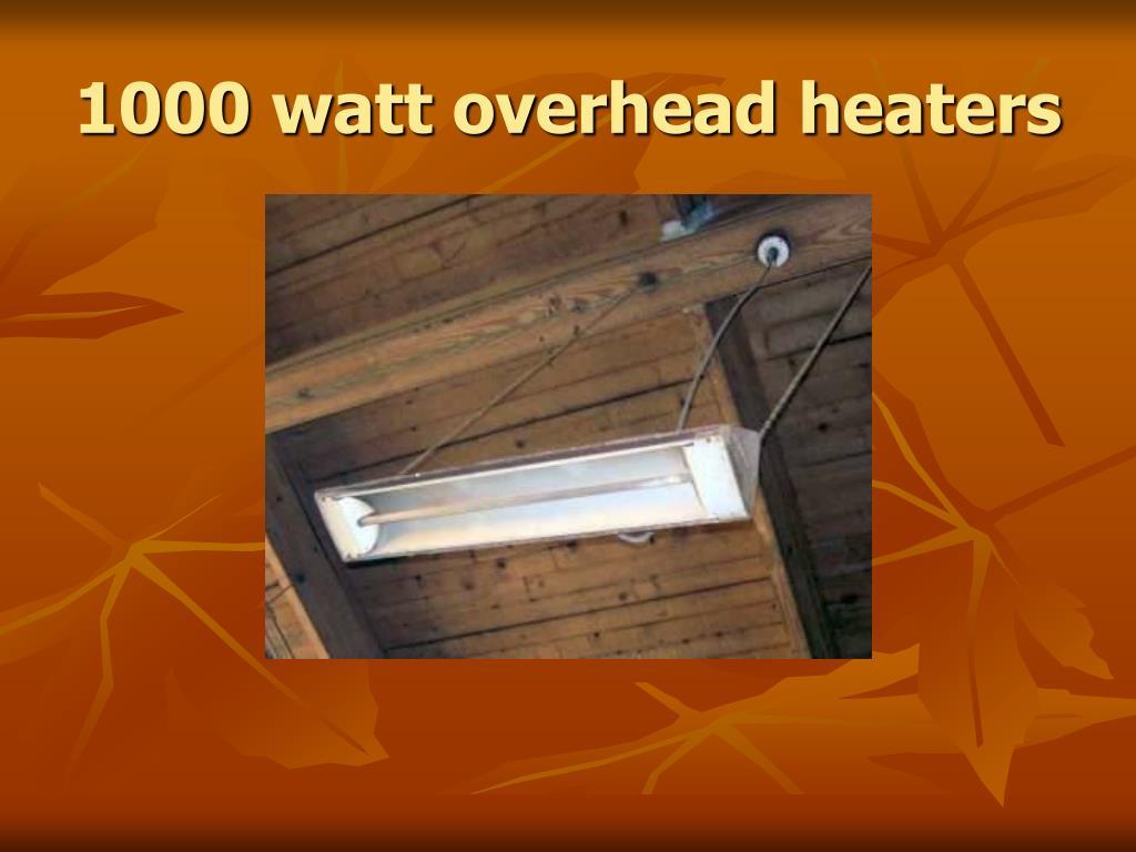1000 watt overhead heaters