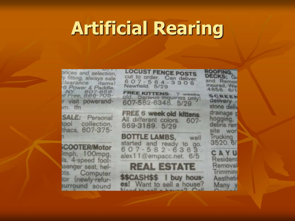 Artificial Rearing