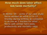 how much does labor affect kid lamb mortality