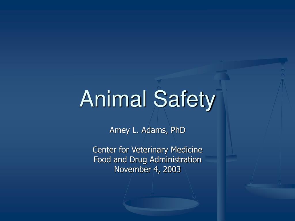 animal safety l.