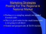 marketing strategies pooling for the regional national market