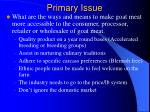 primary issue