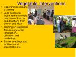 vegetable interventions