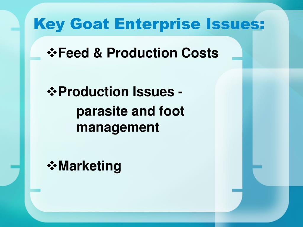 Key Goat Enterprise Issues:
