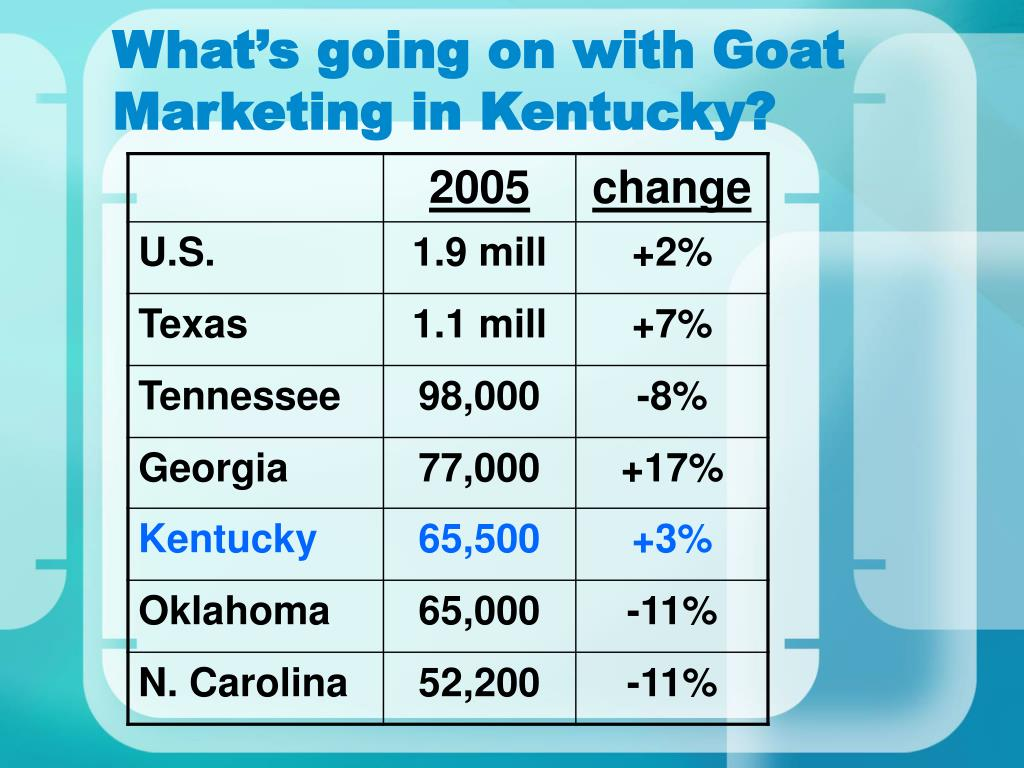 What's going on with Goat Marketing in Kentucky?