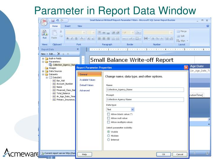 Parameter in Report Data Window