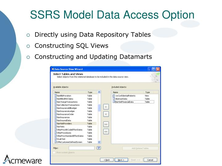 SSRS Model Data Access Option