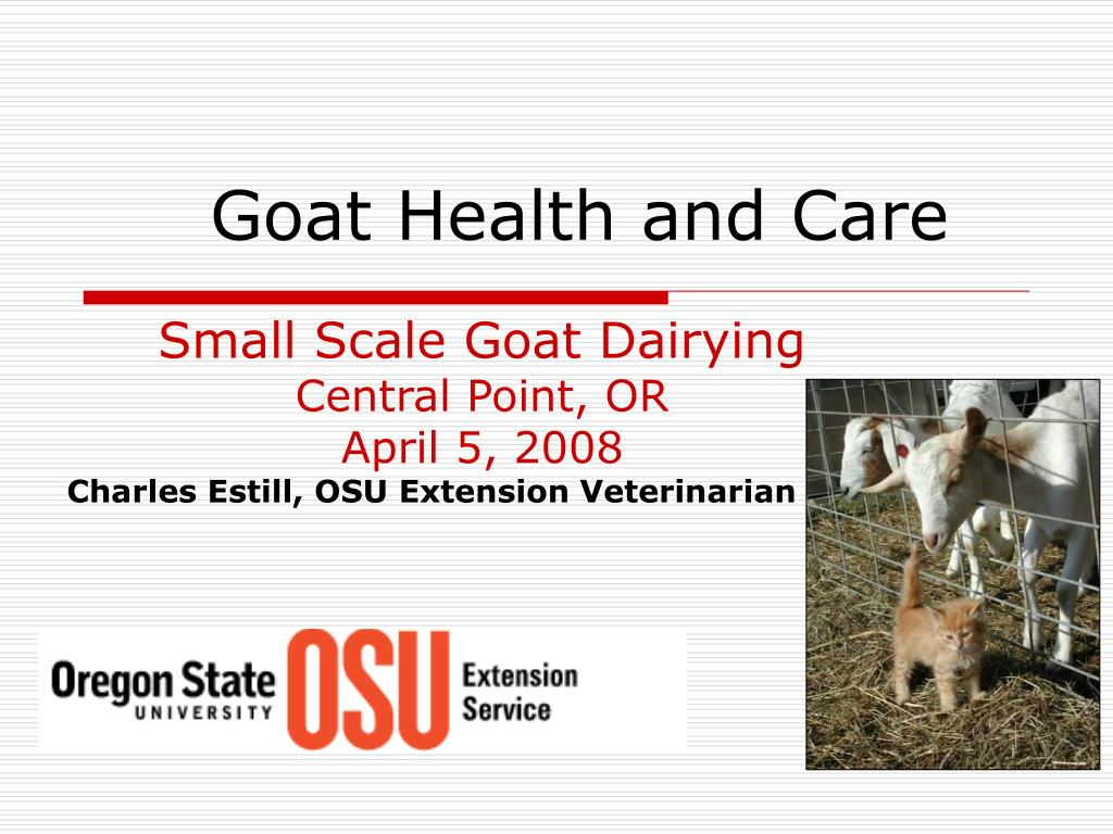 PPT - Goat Health and Care PowerPoint Presentation - ID:110141