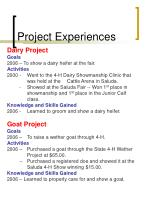 project experiences