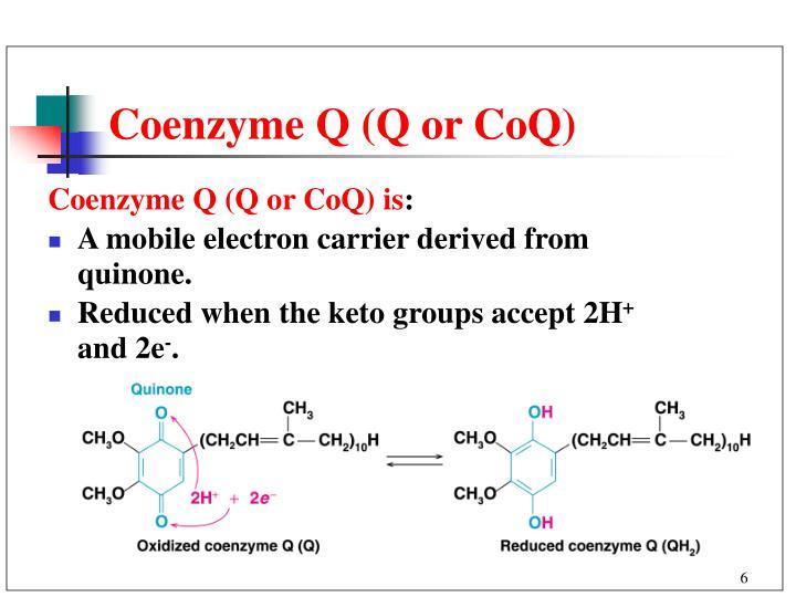 Coenzyme Q (Q or CoQ)