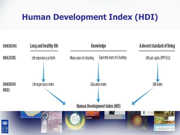 human growth and life span development sociology essay The clep human growth and development exam covers material taught in a one-semester introductory introductory sociology life-span human development.