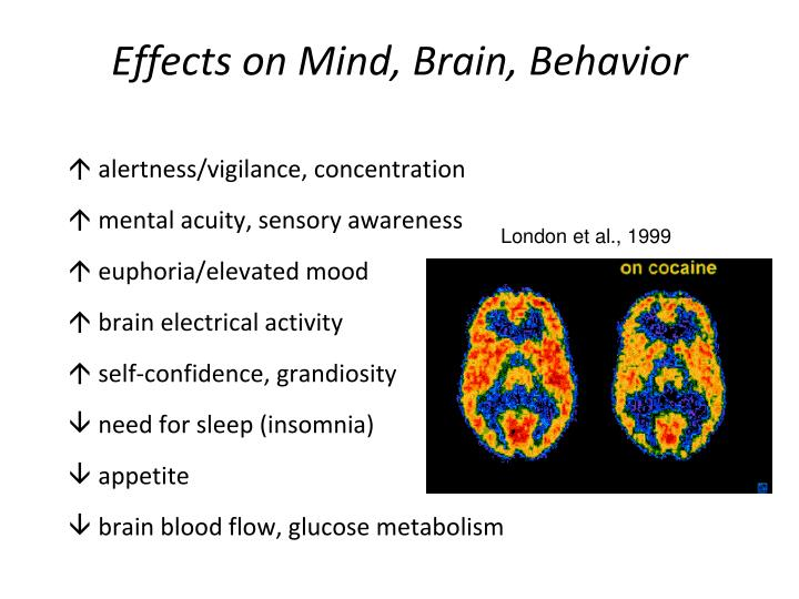 effects on the brain and behavior