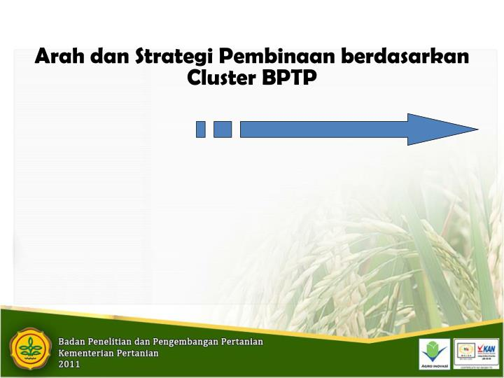 Arah dan Strategi Pembinaan berdasarkan Cluster BPTP