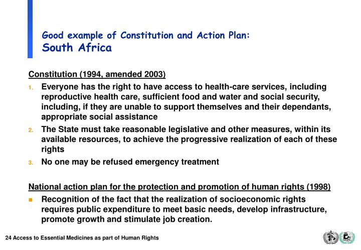 Good example of Constitution and Action Plan: