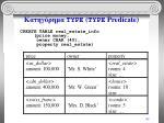 type type predicate