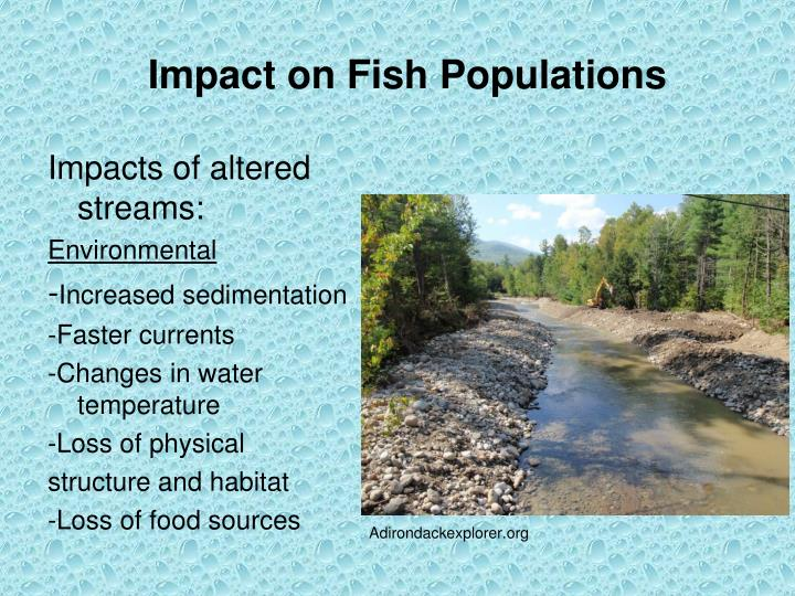 Impact on Fish Populations