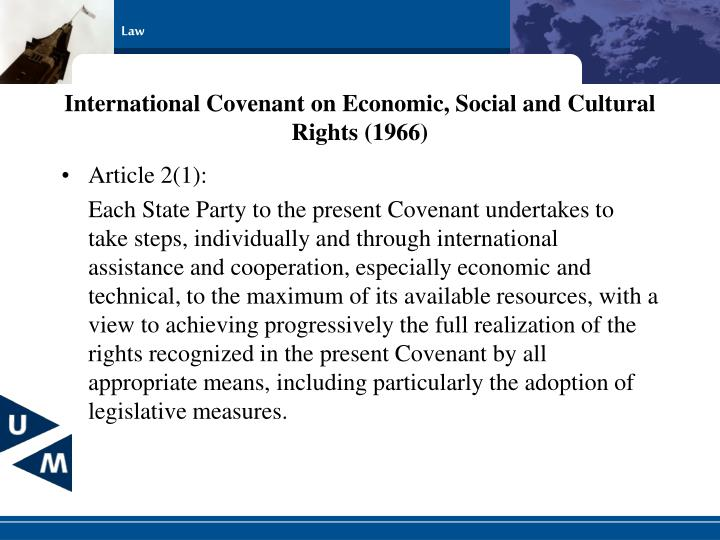 International Covenant on Economic, Social and Cultural Rights (1966)