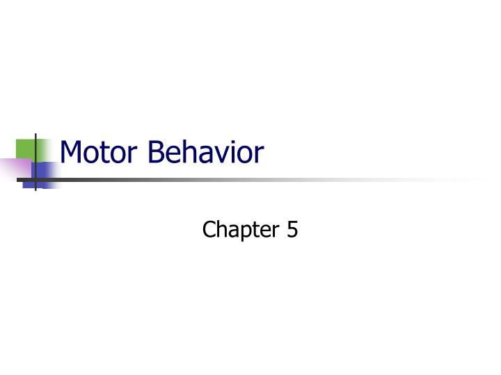 motor behavior n.