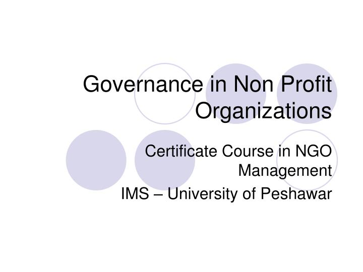 governance in non profit organizations n.