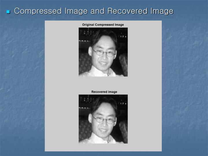 Compressed Image and Recovered Image