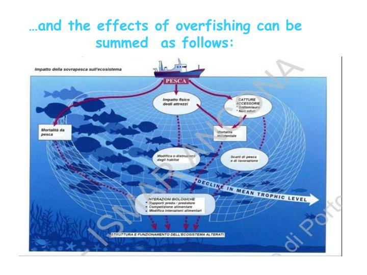 …and the effects of overfishing can be summed  as follows: