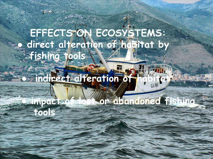 EFFECTS ON ECOSYSTEMS: