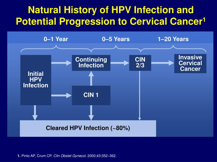 Natural History of HPV Infection and