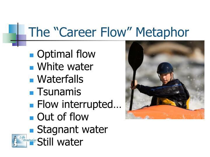 """The """"Career Flow"""" Metaphor"""