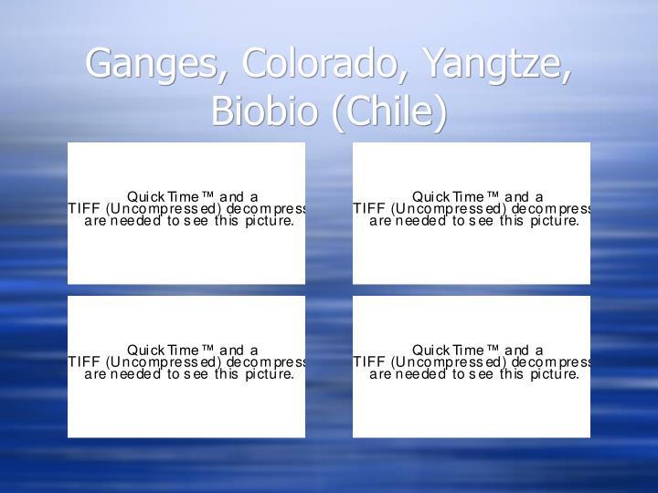 Ganges, Colorado, Yangtze, Biobio (Chile)