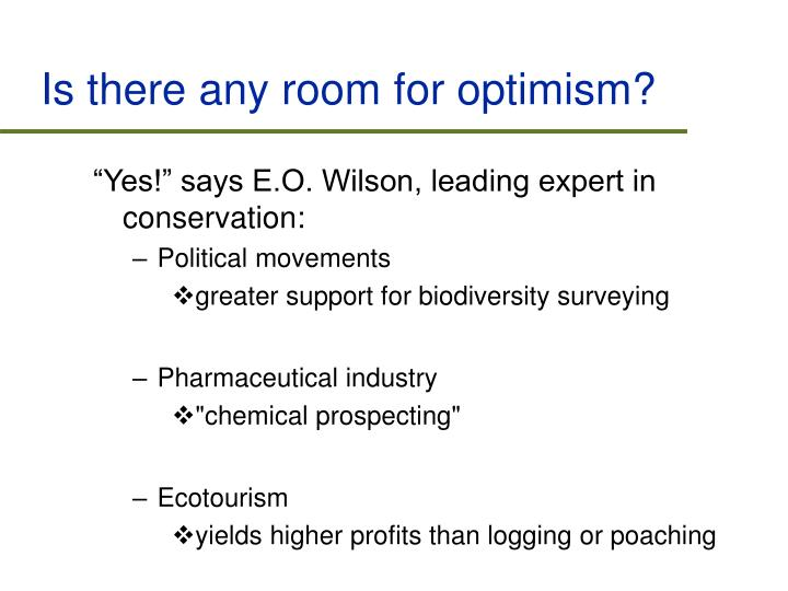 Is there any room for optimism?