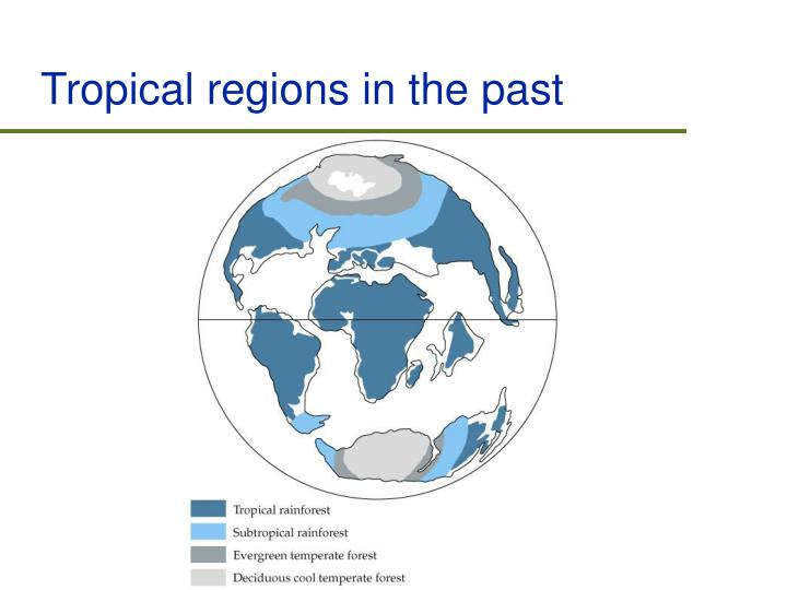 Tropical regions in the past