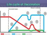 life cycle of vaccination