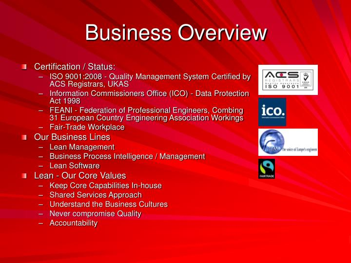Business overview1