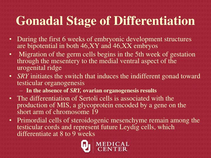 Gonadal Stage of Differentiation