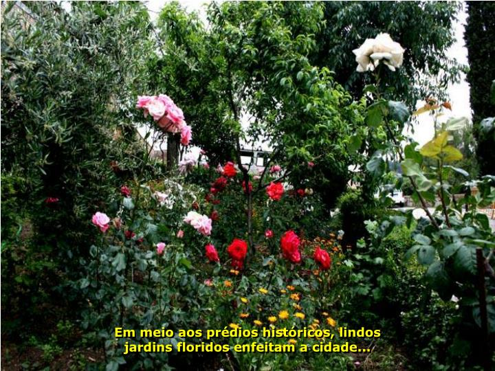 Em meio aos prédios históricos, lindos jardins floridos enfeitam a cidade...