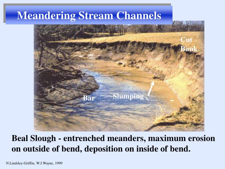 Meandering Stream Channels