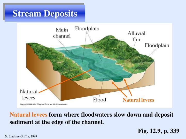 Stream Deposits
